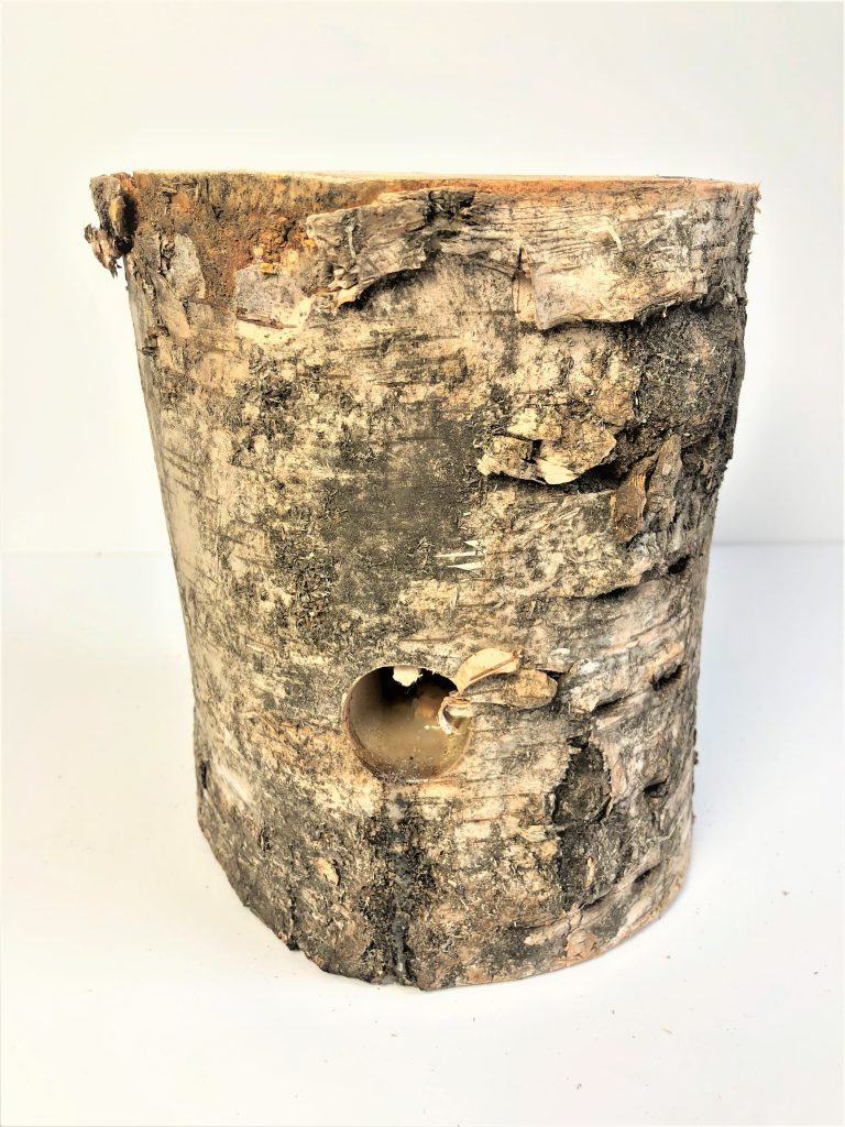 Beržo kaladė d13-17cm